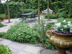 Tuinidee botanicus hoveniers tuinidee for Ontwerpprogramma huis